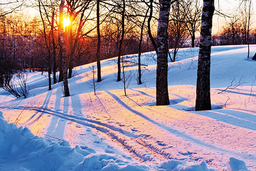 How to End Seasonal Affective Disorder and Start Loving Winter