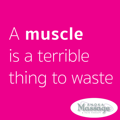 muscle is a terrible thing to waste