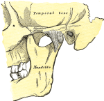 5 Tips to Help With TMJ